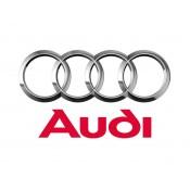 Audi (10)